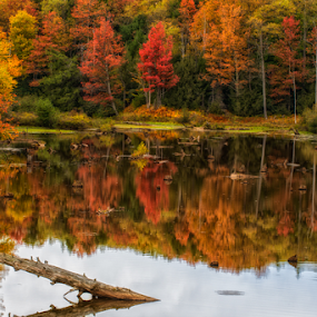 Highlands reflections by Ernie Page - Landscapes Waterscapes ( black water river, water, refections, west virginia, fall, river, fall color )