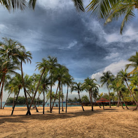 Beach HDR by Michael Chen - Landscapes Deserts