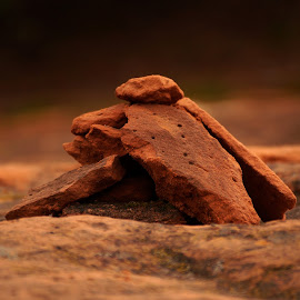 Red Rock by Taylor Mushinski - Nature Up Close Rock & Stone ( red, nature, oklahoma, red dirt, red rock, rock, dirt )