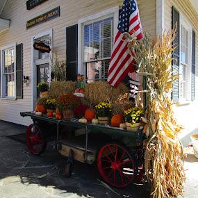 Thanksgiving Time by David Jarrard - Public Holidays Thanksgiving ( corn husks, rail car, pumpkins, fall )