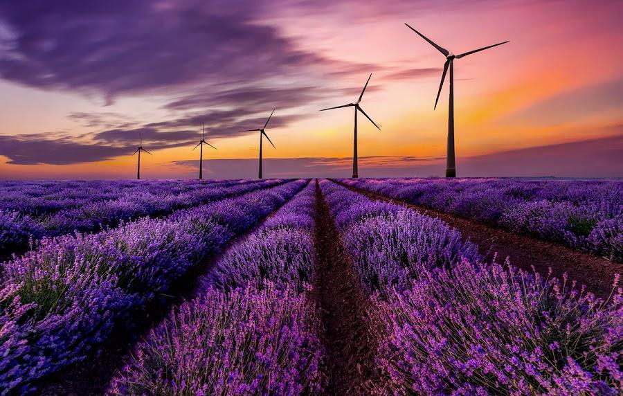 by Gigi Kent - Landscapes Sunsets & Sunrises