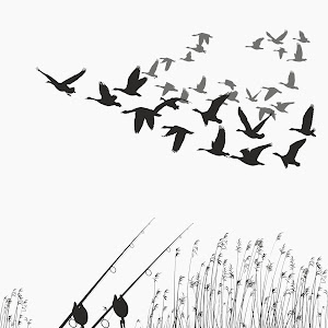 Fishing rod on the shore of the lake and geese.jpg