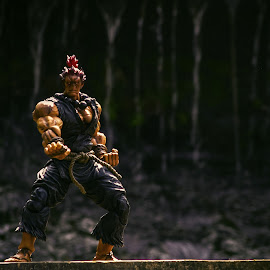 Hadoken Training by Iqbal Musthapa - Artistic Objects Toys (  )