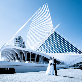 Setting Sail by Relu Jianu - Wedding Other ( wisconsin, lake michigan, park, the milwaukee art museum, wedding bride groom )