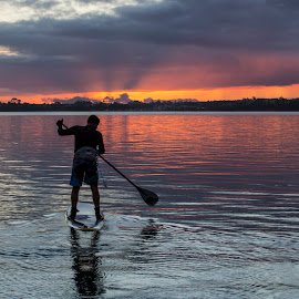 towards the sun by Johan Koch - Sports & Fitness Watersports ( paddle board, sunrise, cockle bay )