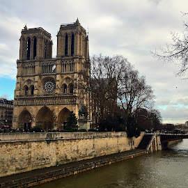Notre Dame de Paris by Dobrin Anca - Instagram & Mobile iPhone ( paris, prayer, church, notre dame, green )