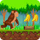 Jungle Monkey Adventures