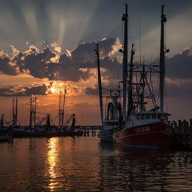 Rays by Ron Maxie - Transportation Boats (  )