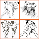 Martial Arts techniques Icon