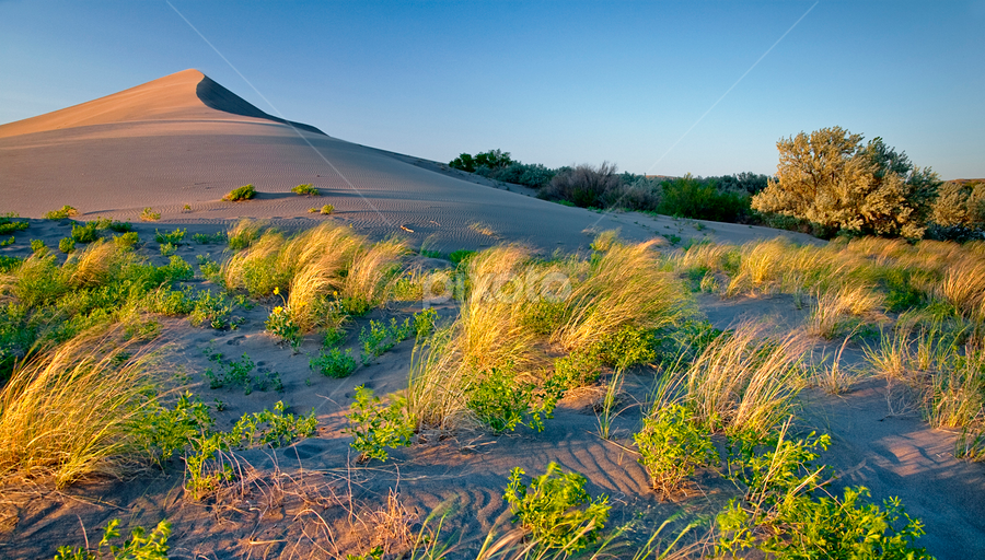 Sun setting on the Sand Dune by Charles Knowles - Landscapes Deserts ( idaho, sand dune, bruneau )