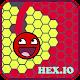 Hex.io