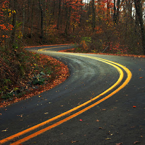 Sweet Curves by Jack Powers - Landscapes Travel ( s curve, fall, travel, scenic, roads )