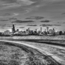 view from the couth by Fraya Replinger - City,  Street & Park  Skylines ( chicago skyline, black and white, cityscape, chicago, city skyline,  )