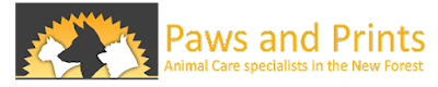 Paws & Prints | Dog Walking Services In Lyndhurst
