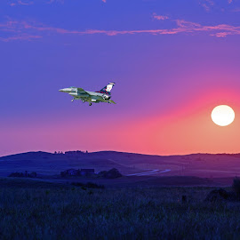 Fly off into the sunset by Will McNamee - Digital Art Things ( dld3us@aol.com, gigart@aol.com, aundiram@msn.com, danielmcnamee@comcast.net, mcnamee2169@yahoo.com, ronmead179@comcast.net )