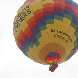THE RAINBOW RYDERS by SHARON ARMIJO - Transportation Other ( hot air balloon, events, albuquerque, sports, fiestas )
