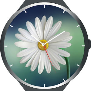 Download Flowers Watch Faces For PC Windows and Mac