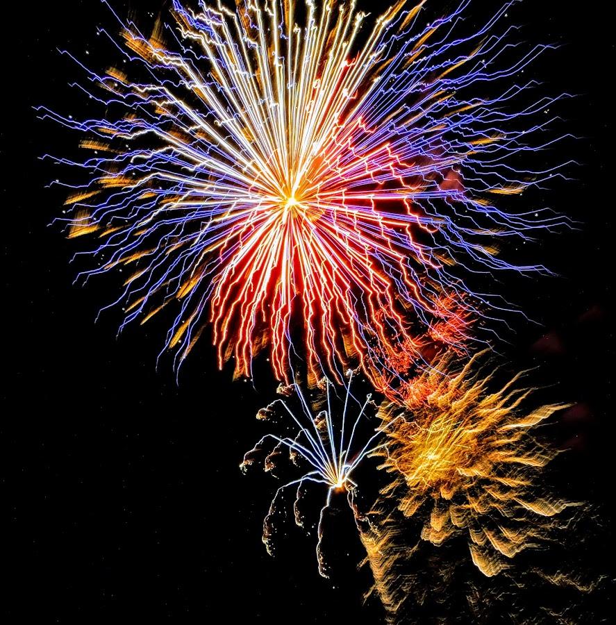 Fireworks Shot by Michael Pruitt - Public Holidays July 4th ( cottonwood, fireworks )