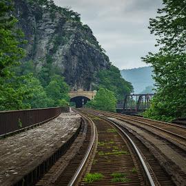 Mountain Railway by Lee Davenport - Transportation Railway Tracks