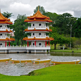 Pagoda Twins by Bryan Lowcay - Buildings & Architecture Other Exteriors ( raw, singapore )