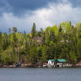 Caddy Lake  by Dave Lipchen - City,  Street & Park  Vistas ( caddy lake, trees, cottages, lake )