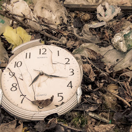 Wasting Time by Mihai Nicolae - Artistic Objects Antiques ( time, clock, time piece, leaves, garbage,  )