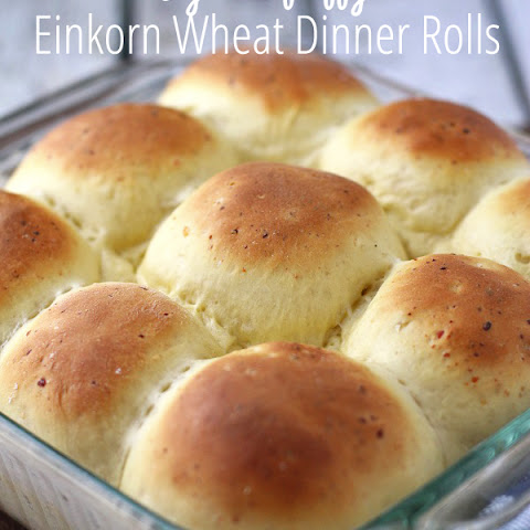 Fluffy Einkorn Wheat Dinner Rolls