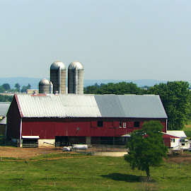 Down on the farm by Jennifer Durham - Buildings & Architecture Other Exteriors ( farm, field, tree, barn, silo )