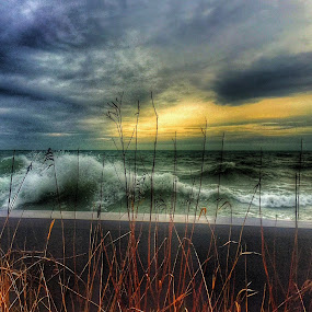 WAVES by Louis Perlia - Nature Up Close Water ( water, wheat, clouds, sky, hdr, color, waves, artistic, pier, lake zmichigan, sun,  )
