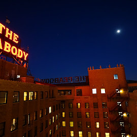 The Peabody by Terrance Hughes - Buildings & Architecture Architectural Detail