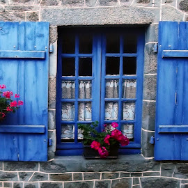 Window by Dobrin Anca - Buildings & Architecture Architectural Detail ( window, moncontour, street, funny, flower )