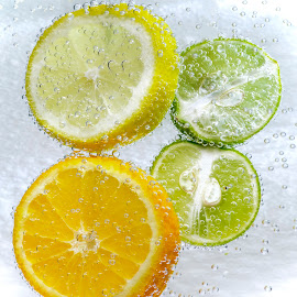 Bubbly Citrus by Jim Downey - Food & Drink Fruits & Vegetables ( orange, citrus fruit, lime, wet, lemon )