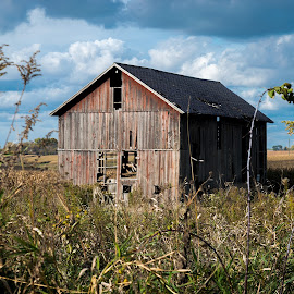 Corn Crib in Field by LINDA HALLAUER - Buildings & Architecture Decaying & Abandoned