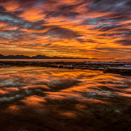 South African Sunrise by Michael De Nobrega - Landscapes Cloud Formations ( clouds, water, reflection, waves, south africa, reflections, ocean, beach, mountains, the point, mossel bay, garden route, sunrise, western cape )