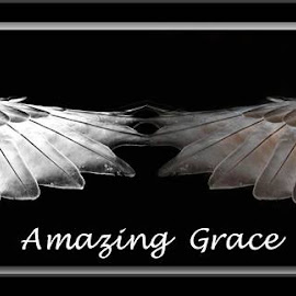 Amazing Grace by Peggy McFarland - Typography Captioned Photos ( black and white, wings, mirror image, graceful, birds )