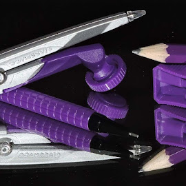PURPLE by SANGEETA MENA  - Artistic Objects Other Objects