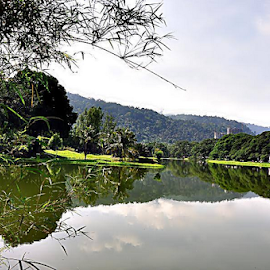 Scenic Taiping Lake Garden.Pic 2 by Robert Rizal Abdullah - Landscapes Prairies, Meadows & Fields