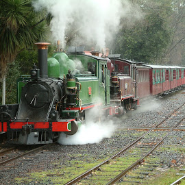 Fog and steam by Paul Bech - Transportation Trains ( railway, emerald, double header, fog, puffing billy, locomotive, train, steam )