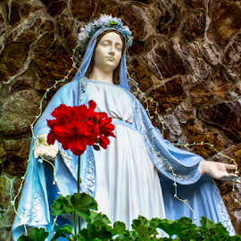 The Virgin by Ted Anderson - Buildings & Architecture Statues & Monuments ( statue, red, church, flower, religious )