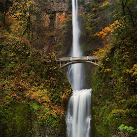 Multnomah Falls by Michael Cerizo - Landscapes Travel ( oregon, waterfalls, fall colors, color, falls, bridge, pacific north west )