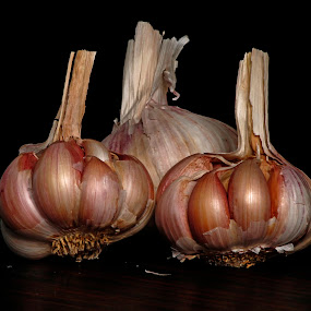 3 Garlic by Cristobal Garciaferro Rubio - Food & Drink Ingredients ( garlic, ajo, texture, ajos, specie )