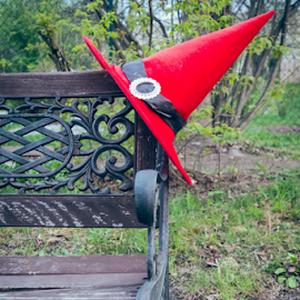 Witches hat in nature by Denny Gruner - Artistic Objects Clothing & Accessories ( nobody, twigs, single, decorative, bright, clothing, simple, one, wizard, object, hat, fantasy, mystic, pointy, nature, magician, celebrate, branches, decoration, witchcraft, mage, fun, red, witch hat, pointy hat, natural, wooden bench )