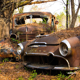 Dynamic Duo by Dan Bartlett - Transportation Automobiles ( car, truck, rust, forgotten, woods, desoto, abandoned )