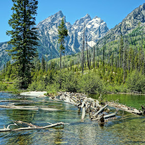 Grand Teton Summer by Jim Czech - Landscapes Mountains & Hills ( forests, stream, mountains, mountain stream, tetons,  )