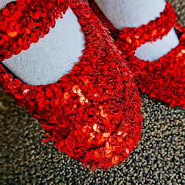 Where's Dorothy? by Barbara Brock - Artistic Objects Clothing & Accessories ( wizard of oz shoes, dorothy's slippers, red shoes, magical slippers, red slippers )