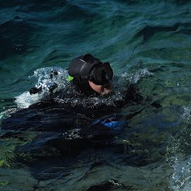 Scuba Diver by David Gilchrist - Sports & Fitness Other Sports ( diver, scuba diver, underwater, scuba diving )