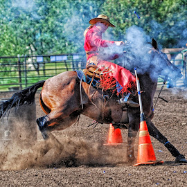 Mounted Shooter - HD by Twin Wranglers Baker - Sports & Fitness Rodeo/Bull Riding (  )