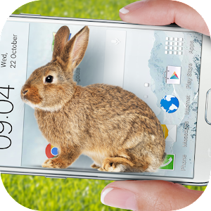 Download Bunny in Phone Cute joke For PC Windows and Mac