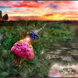 Merlin's Castle by Tony Allison - Digital Art Animals ( butterfly, fairyland, florida, sunset, landscape )