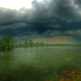 Storm roll by Zeralda La Grange - Instagram & Mobile iPhone ( #lake, #nature, #trees, #storm, #green, #water, #landscape, #blue, #clouds, #louisianan, #sky, #iphone, #hdr )